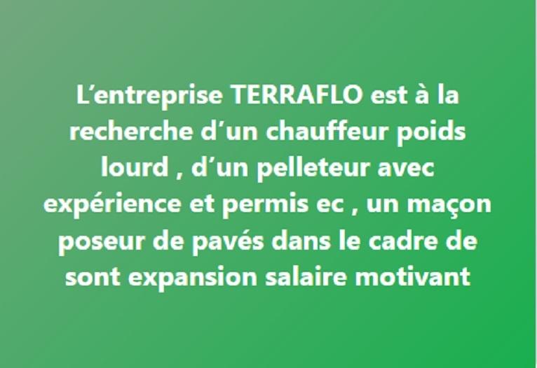 L'entreprise TERRAFLO est à la recherche d'un chauffeur poids lourd , d'un pelleteur avec expérience et permis ec , un maçon poseur de pavés dans le cadre de sont expansion salaire motivant